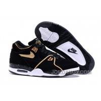 Nike Air Flight '89 Black/Metallic Bronze-White Shoes For Sale Hot Now